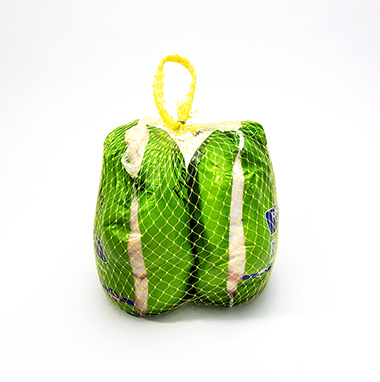 Colorful plastic netting and handle holding two whole birds